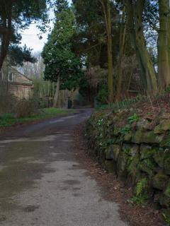 The drive down to the Manor from the gates