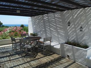 Beachfront 3-bedroom Villas at Vromolimnos Beach