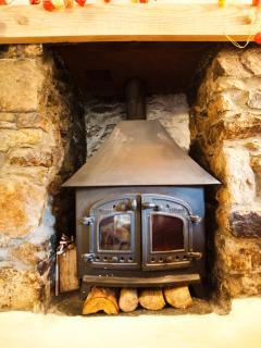 Wood burner in lounge