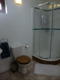 View of the shower in the ensuite shower room
