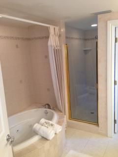 Master bath W/ Jetted tub, walk-in shower, double sinks and bidet