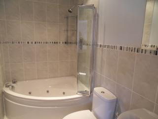 Spacious Contemporary & Luxurious En-Suite to Master Bedroom with Spa Bath