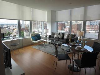 Radian 2BR w/WiFi, Central Boston