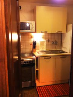 Kitchen with new fridge, new laundry machine, new dishes machine, new oven and new microwave oven.