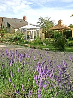 outside the cottage with the lavender in full bloom
