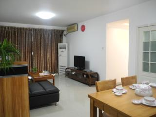 3 BR Apt Sea View near OCT, Shenzhen