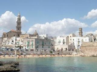 Beautiful Villa 3 Bedrooms, Monopoli