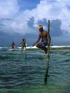 Stilt Fishermen at Kathaluwa Beach