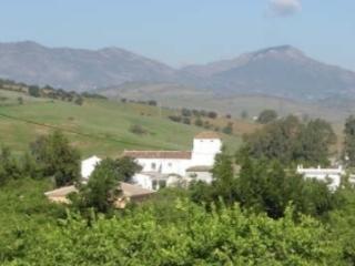 Cortijo Carranque