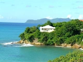 Ginger Lily - Carriacou, St. Vincent and the Grenadines