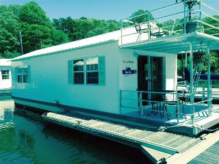 Most Unique Rental! Spacious and Modern Gemini Houseboat., Bourne