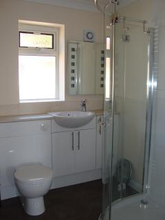 Bathroom 1 (downstairs) with large shower cubicle, WC and sink