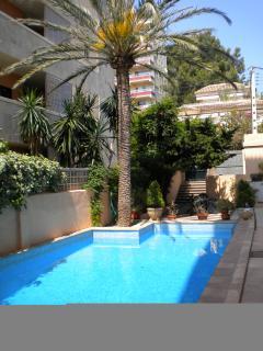 Apartment Block's Private Swimming Pool