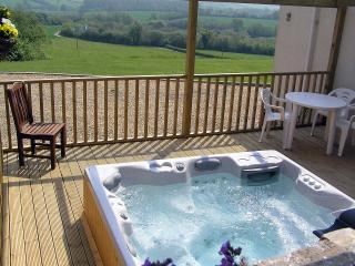 Relax and enjoy the views in the hot tub
