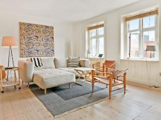 Large and bright Copenhagen apartment near Nyhavn