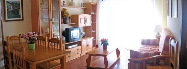 Salón. Foto panorámica del mismo. La TV actual es plana de led y el sofá nuevo.