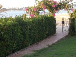 519 - Villa - Non Standalone / 4 Bedrooms, Al Alamayn