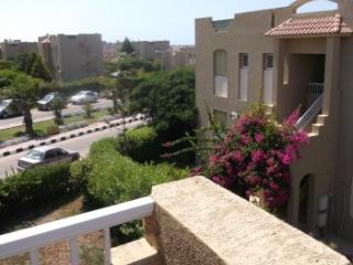 475 - Apartment - Above Ground / 2 Bedrooms, Alexandria