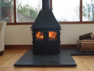 Log Burner in the Garden room