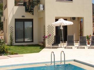 Villa Venus and pool