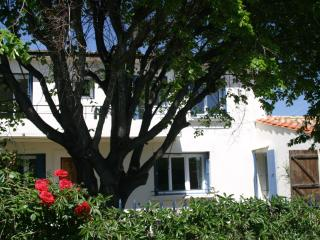Esclarmonde, Cascastel-des-Corbières
