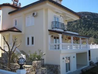 Villa Rose, Yesiluzumlu