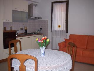 kitchen - dinning room with sofa - bed  , TV SAT - DVD