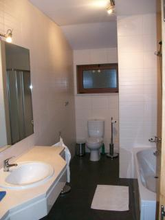 Ensuite bathroom/shower for master bedroom