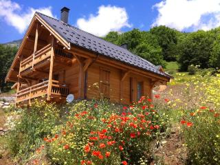 Alpine Summer Activities and Winter Ski Chalet sleeping 8-10