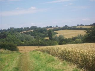 Walking to  Standon across the fields