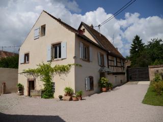 La cour du vieux sureau, Mittelbergheim