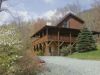 Fins n Feathers a authentic log cabin located in Seven Devils, sleeps 10, Boone