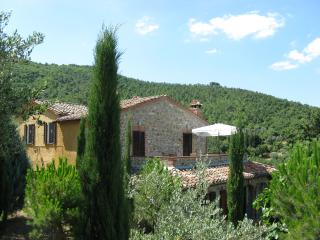 house from olive terraces