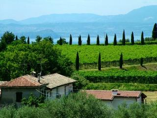 Wonderful farmhouse with pool close to Lake Garda, Bardolino