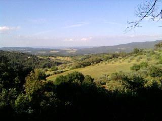 le splendide colline