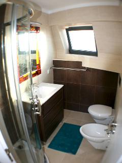 bathroom 1st floor