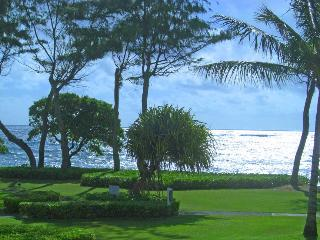 Gorgeous Ocean Views, Beach Steps Away, Kapaa