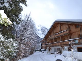Apartment Chamone, Chamonix