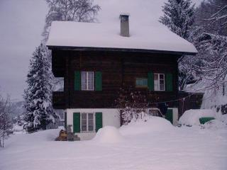 Traditional Family Chalet