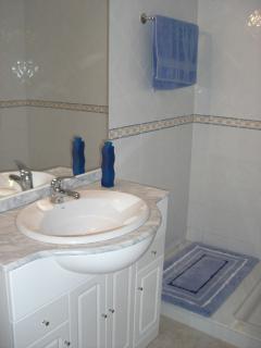 Downstairs bathroom, large shower, toilet, bidet and marble surround sink.
