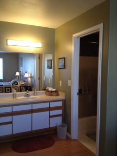 Master Bedroom Bath Area