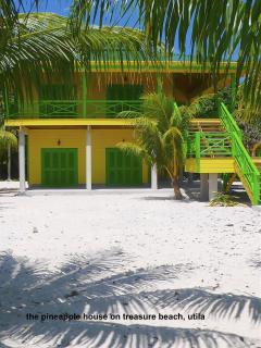 the pineapple house on treasure beach