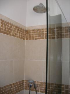 Luxurious brazilian shower