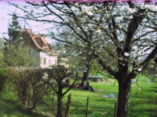 Sérendipité - a charming Perigordine ensemble of farmhouse and pigeonnier.