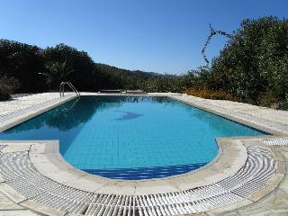 The Pool by Day