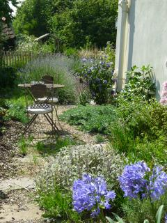 A table for two in the gravel garden....agapanthus, roses, clematis, fig, mint for the Pimm's