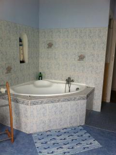 Corner bath with shower fixing