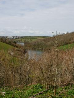 Porth Creek (from our access lane)