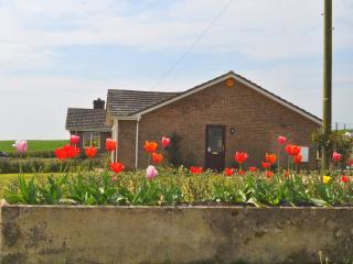Brynmor Acres - Cerne Abbas, Dorset