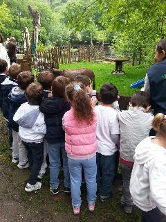 Activities: a farm school for children